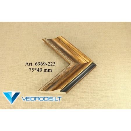 Art.6969-223