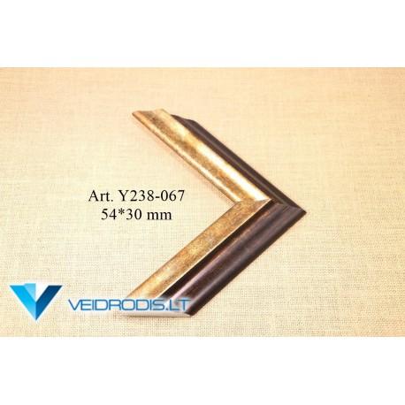 Rėmeliai Y238 (067.143.148.149)