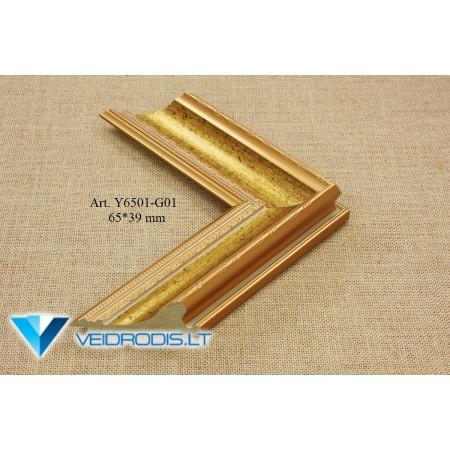 Art.Y6501-G01